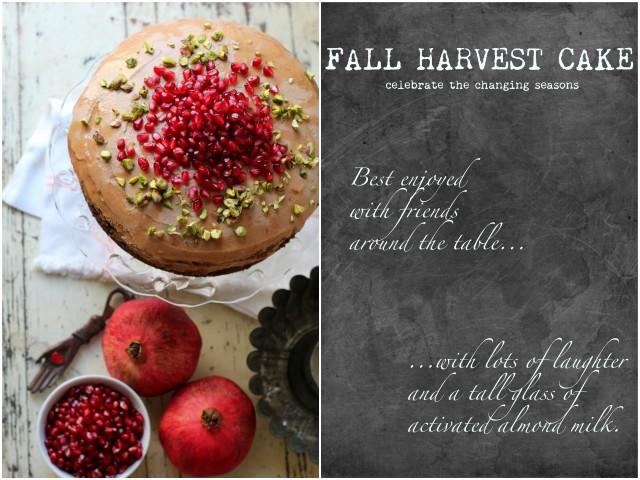 Fall Harvest Cake-005