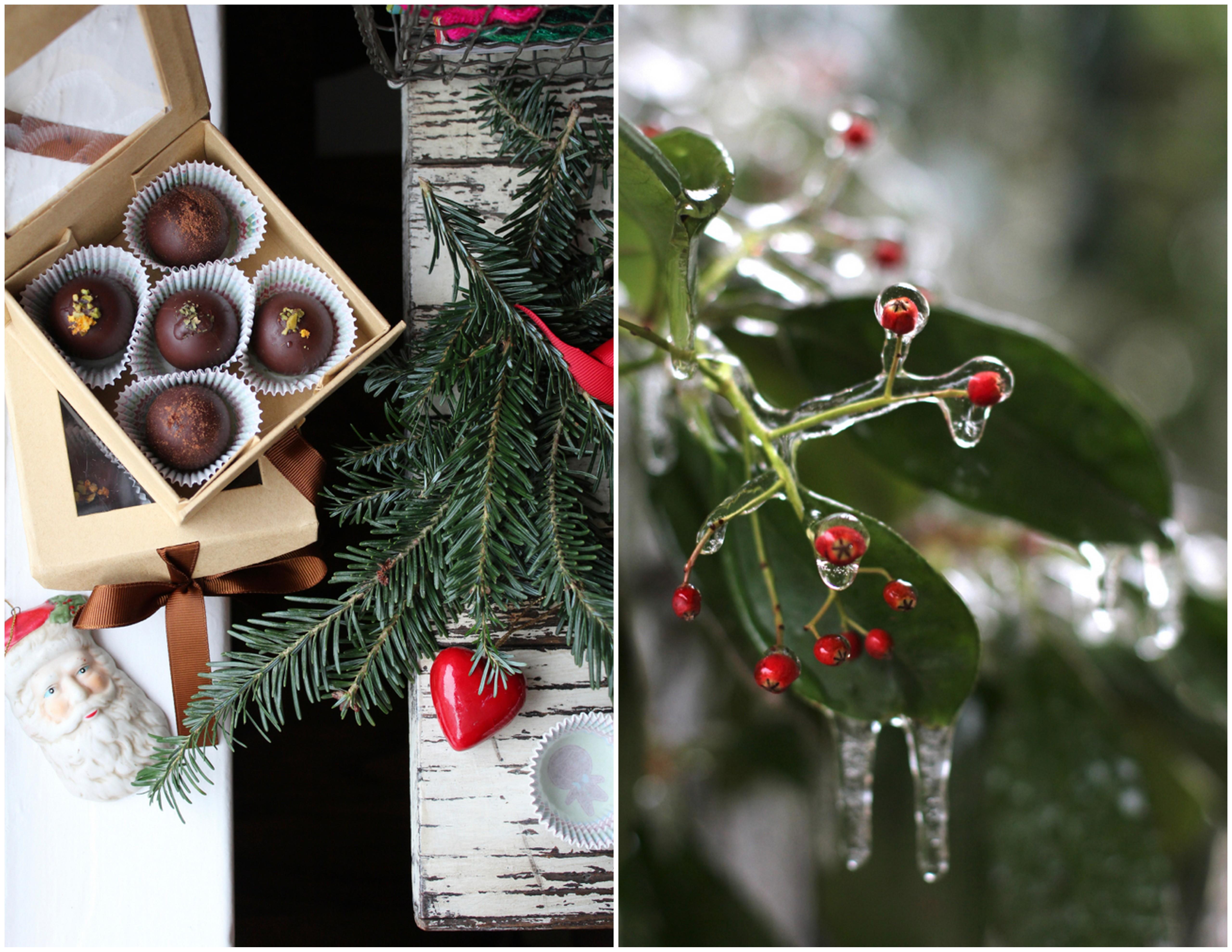 Christmas Truffles-001