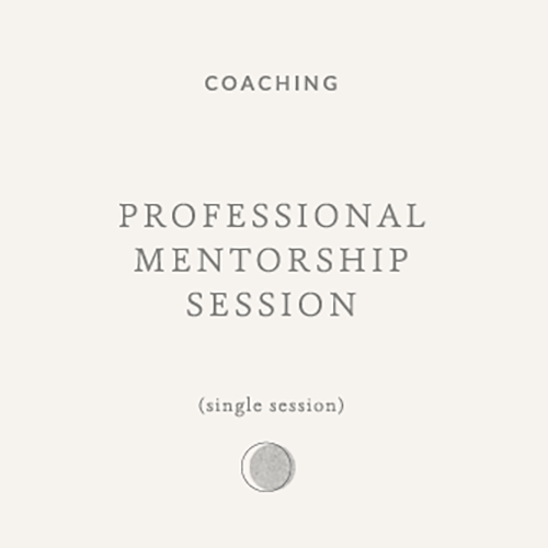 professional-mentorship-session