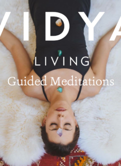Vidya Living Guided Meditations Cover Art